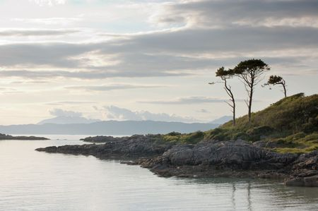 Trees by bay at Arisaig looking west toward the island of Skye, Scotland, midsummer Stock Photo - 6883569