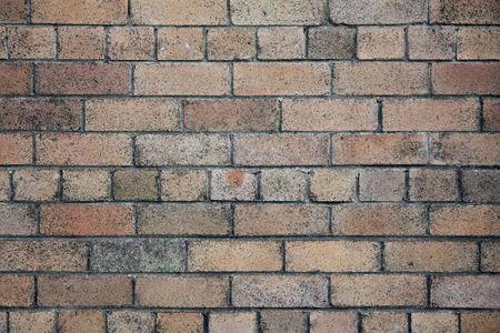 A wind bown brick wall at the beach