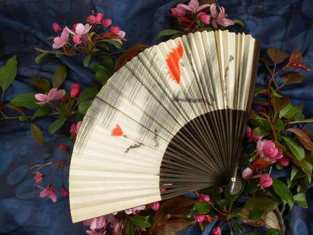 fan Stock Photo