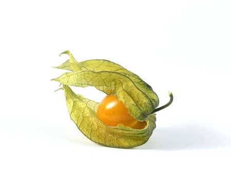 physalis: Physalis fruit