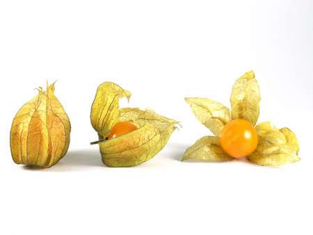 physalis: Fruta de Physalis Foto de archivo