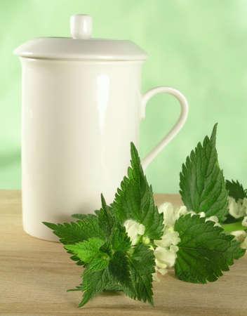 urtica: herbal tea