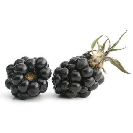 fresh blackberries isolated on white background Stock Photo