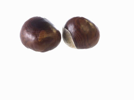 conker: close-up of Chestnuts isolated on a white background