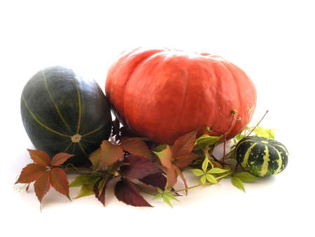 series of fruits and vegetables: pumpkin on a white background