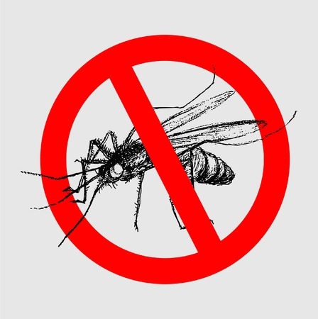 disease carrier: STOP MOSQUITO