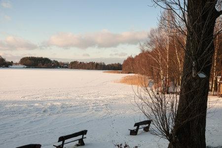 lake, winter, nature, snow, sky, water, tree, ice