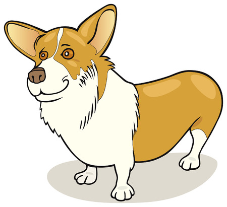 Pembroke Welsh Corgi dog Stock Vector - 5839960