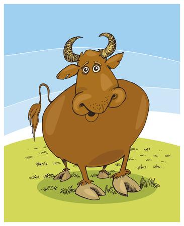 funny: funny bull