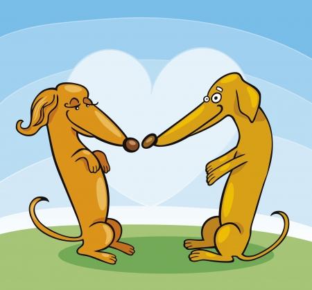 snuffelen: Teckel honden in de liefde