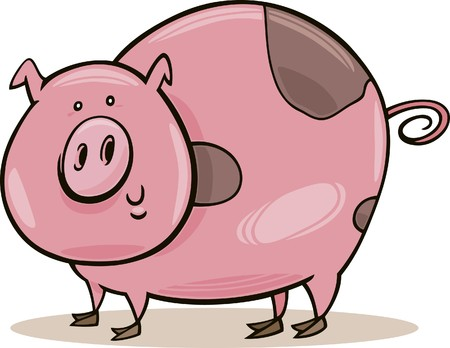 farm animals: spotted pig Vector