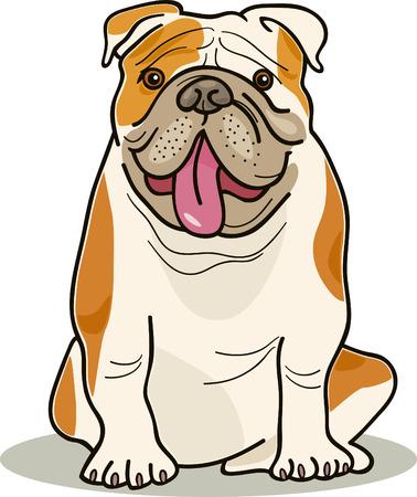 british bulldog: illustration of purebred english bulldog