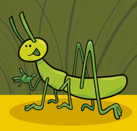 small insect: cartoon illustration of funny grasshopper