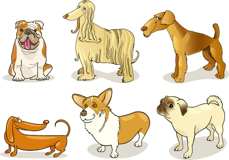 purebred dogs Stock Vector - 8909810