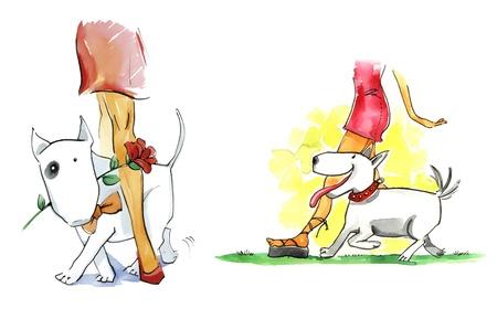 bullterrier: illustration of woman and bull terrier dog