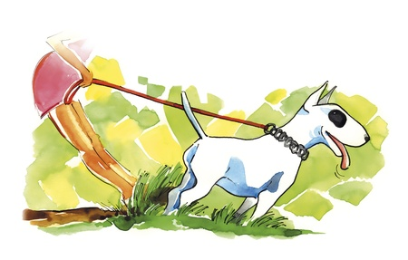 terriers: illustration of woman and bull terrier dog on walk