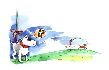 bullterrier: illustration of Bull terrier on the leash