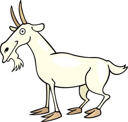 witty: Cartoon illustration of farm goat Illustration