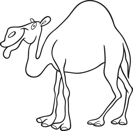 cartoon illustration of dromedary camel for coloring book