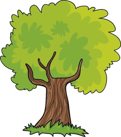 cartoon spring: green tree cartoon illustration