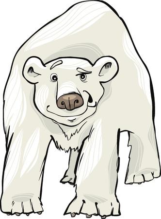 funny polar bear Vector