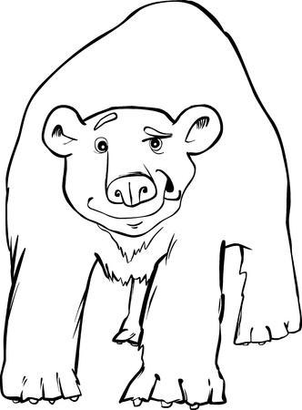 polar bear coloring page Vector