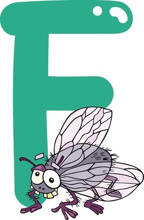 alfabeto con animales: ilustración de dibujos animados de la letra F para la mosca Vectores