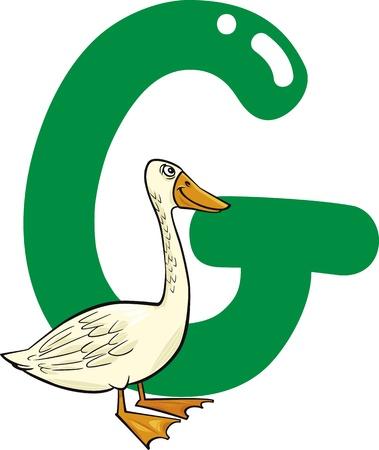cartoon illustration of G letter for goose Vector