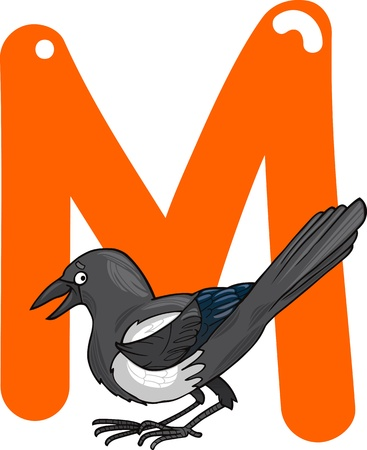 magpie: cartoon illustration of M letter for magpie