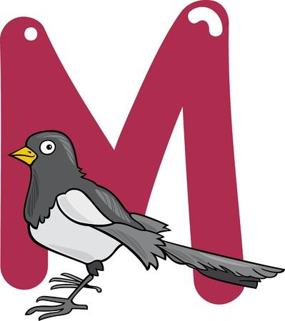 urraca: ilustraci�n de dibujos animados de la letra M de la urraca Vectores