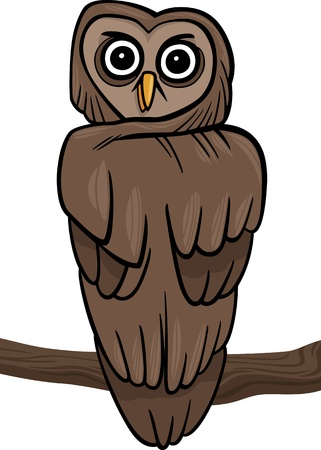 cartoon illustration of owl on the branch Vector