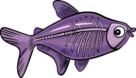 x xray: cartoon illustration of x-ray fish Illustration