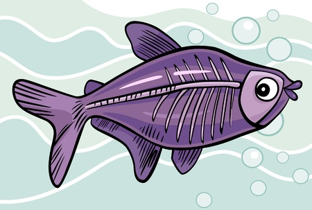 cartoon illustration of x-ray fish Vector