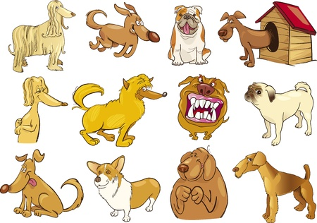 afghan hound: cartoon illustration of funny different dogs set