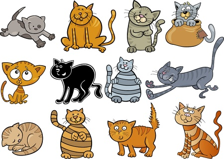 moggie: cartoon illustration of funny twelve cats set