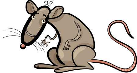 Cartoon Humorous Illustration of Rat Animal Character Vector