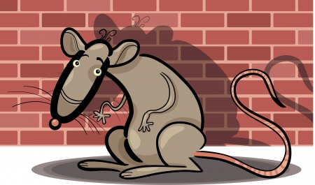 Cartoon Humorous Illustration of Rat Against Brick Wall Vector