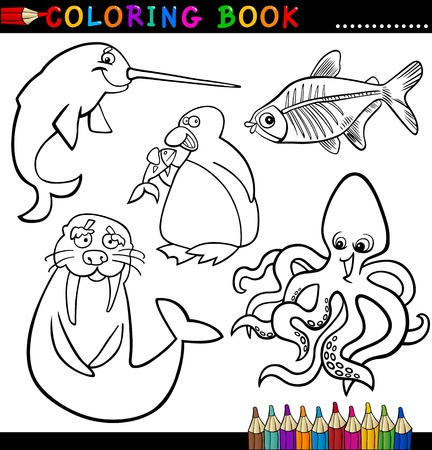 libro caricatura: Libro para colorear o ilustración de dibujos animados Página de Humor Animales Marinos y Polar para Niños