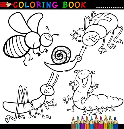 bug cricket: Coloring Book or Page Cartoon Illustration of Funny Insects and Bugs for Children