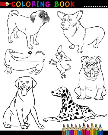 Coloring Book or Page Cartoon Illustration of Funny Purebred Dogs for Children Vector