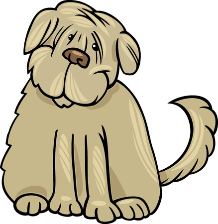 sit stay: Cartoon Illustration of Funny Purebred Tibetan Terrier Dog or Labrador Doodle or Briard