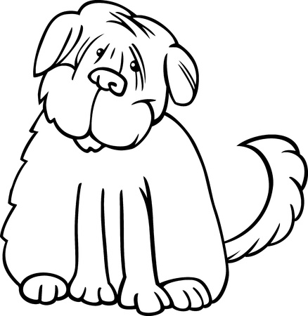 sit stay: Cartoon Illustration of Funny Purebred Tibetan Terrier Dog or Labrador Doodle or Briard for Coloring Book