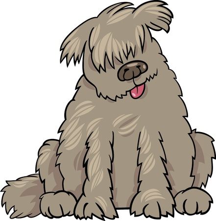 sit stay: Cartoon Illustration of Funny Purebred Newfoundland Dog or Labrador Doodle or Briard