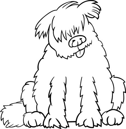 sit stay: Cartoon Illustration of Funny Purebred Newfoundland Dog or Labrador Doodle or Briard for Coloring Book