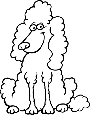 Cartoon Illustration Of Funny Purebred White Poodle For Coloring