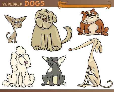 Cartoon Comic Illustration of Canine Breeds or Purebred Dogs Set Vector