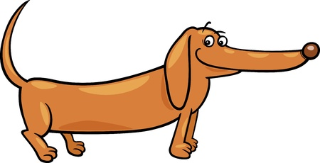 Cartoon Illustration of Cute Purebred Dachshund Dog Stock Vector - 17087912