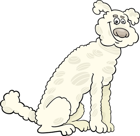 sit stay: Cartoon Illustration of Cute White or Beige Poodle Dog