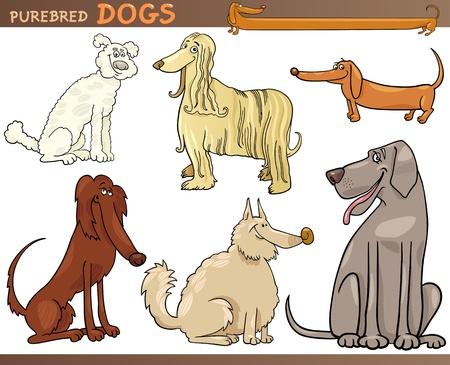 shaggy: Cartoon Comic Illustration of Canine Breeds or Purebred Dogs Set Illustration