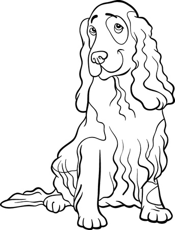 cocker spaniel: Black and White Cartoon Illustration of Funny Cocker Spaniel Dog for Coloring Book